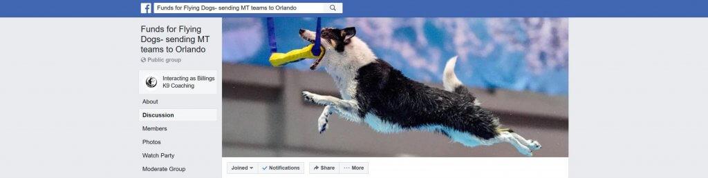 Funding For Flying Dogs